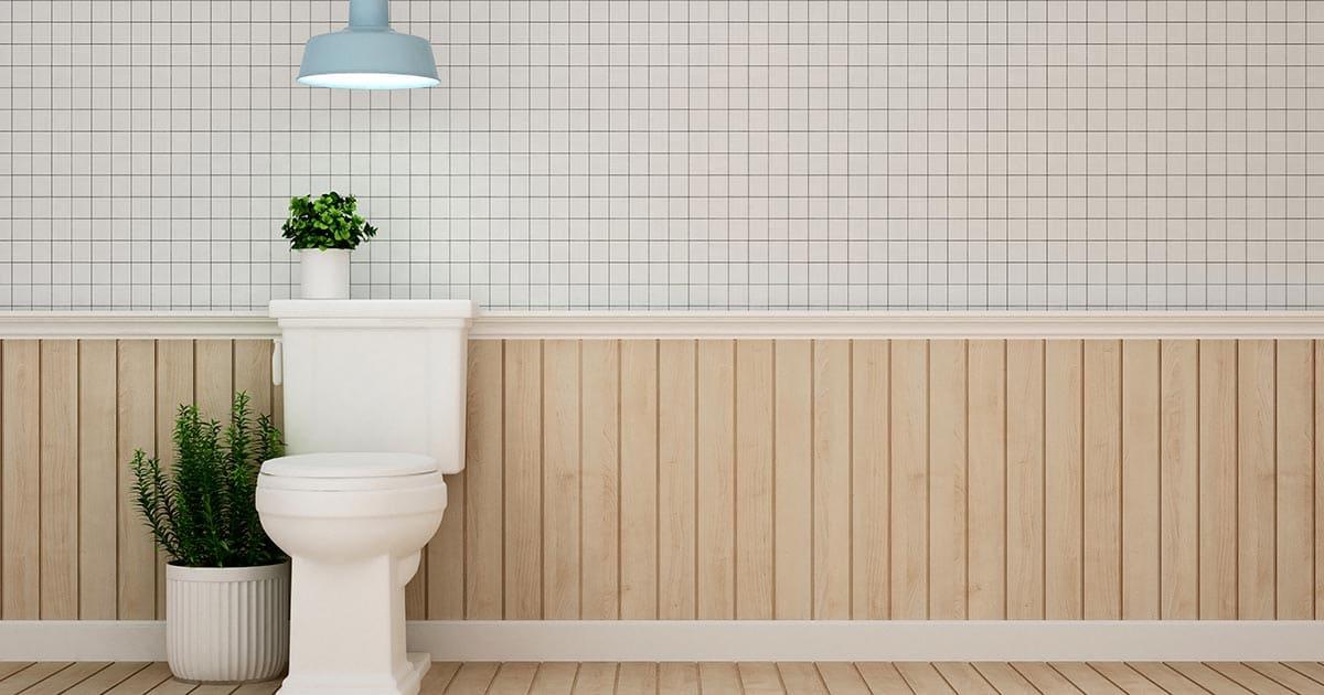 Toilet Installation and Toilet Repair